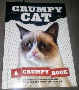 Grumpy Cat Book Cover
