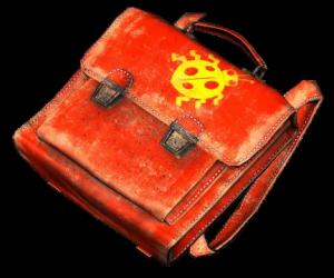 Child_briefcase